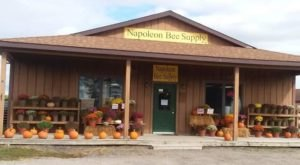 The Sweetest Little Honey Shop In Michigan Will Have You Buzzing With Excitement