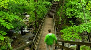 This Beloved Virginia Hike Promises Epic Waterfalls And Tons Of Greenery This Spring
