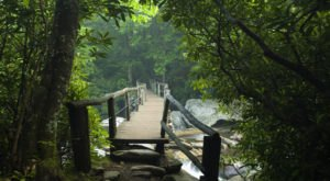 Hike Through The Great Smoky Mountains On This Unforgettable Mountain Trail