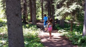 Your Kids Will Love This Easy Waterfall Hike Right Here In South Dakota