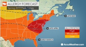 You Might Not Like These Predictions About New Hampshire's Upcoming Peak Allergy Season