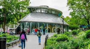The One Of A Kind Carousel Park In New York That's Perfect For Your Next Family Adventure