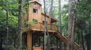 Wake Up Among The Treetops At These Enchanting Treehouses In Maryland