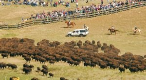 The South Dakota Festival That Was Just Named One Of The Best In The World