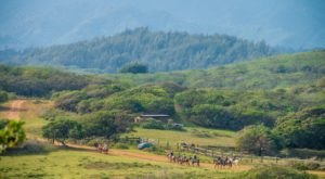 The 600-Acre Ranch In Hawaii That's Worth A Visit From Any Corner Of The State