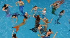 North Carolina's Most Enchanting Mermaid Gathering Is Almost Too Magical To Be True