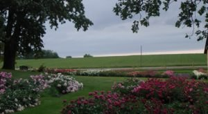 This Fabulous Flower Garden Winery In Minnesota Is Positively Intoxicating
