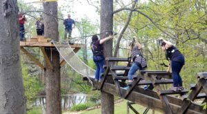 You Can Play Among The Trees At This Treehouse-Themed Adventure Park In Pennsylvania