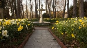 Visit This Daffodil Garden In Rhode Island For That Beautiful Scenic Experience You Crave