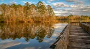 Sneak Away To These 9 Underrated State Parks In Louisiana For That Wonderful, Scenic Experience You Need
