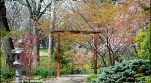This Beautiful Botanical Garden In The Heart Of Cincinnati Is A Sight To Be Seen