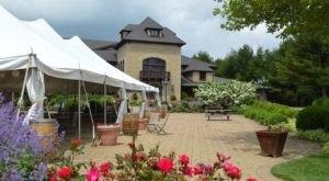 Enjoy Wine And Wildflowers At This Breathtaking Mountain Vineyard In Virginia