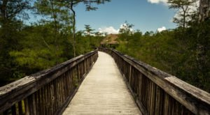 Here's What The Real Middle Of Nowhere Looks Like In Florida And It's Absolutely Gorgeous