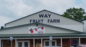 This One-Of-A-Kind Fruit Farm In Pennsylvania Serves Up Fresh Homemade Pie To Die For