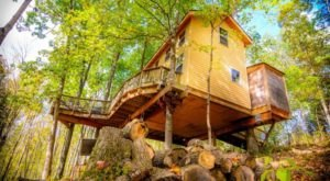 This Treehouse Resort In Kentucky May Just Be Your New Favorite Destination