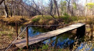 The Nature Center In Kansas That's Worth Its Own Day Trip