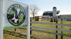 Visit This Dairy Farm In Delaware For The Charming Rural Experience You Crave
