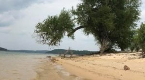 The Underrated Sandy Beach In Arkansas You Absolutely Need To Visit
