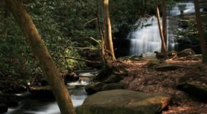 This Easy Breezy Waterfall Hike In Georgia Is A Must-See For Nature Lovers