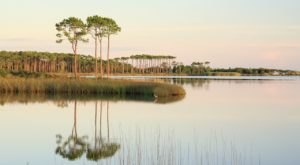 Plan Your Visit To The Coastal Dune Lakes Of This Stunning State Park In Florida