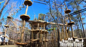 This Treetop Obstacle Course In Texas Is Fun For The Whole Family