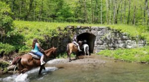 The Horseback Waterfall Tour In North Carolina That's Simply Unforgettable