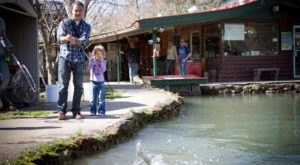The Hidden Trout Farm In Tennessee Where Everyone In The Family Will Have Endless Fun