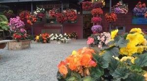 5 Best Kept Secret Restaurants In Alaska That Are So Worth Seeking Out