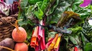 The 7 Best Summer Markets In Alaska For Farm Fresh Produce