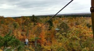 Soar Above The Fall Foliage On This Unforgettable Minnesota Zip Tour