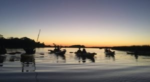 Take A Full Moon Kayak Tour To See South Carolina In A Whole Different Light