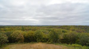 This Little-Known Scenic Overlook In Minnesota Will Take You High Above The Trees