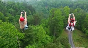 This Zipline Hike In Kentucky Will Whisk You Away On An Unforgettable Adventure