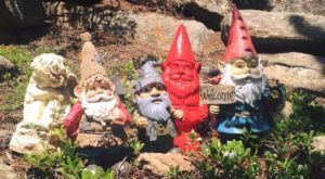 There's A Fairy Gnome Wonderland Hiding In Colorado And It's Simply Magical