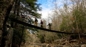 The Bridge Hike Near Nashville That Will Make Your Stomach Drop