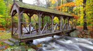This Babbling Brook Forest In Massachusetts Is The Perfect Place To Get Away From It All