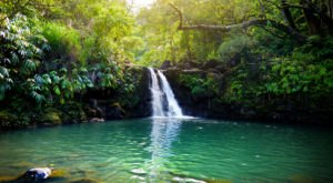 Hawaii's Most Refreshing Hike Will Lead You Straight To A Beautiful Swimming Hole