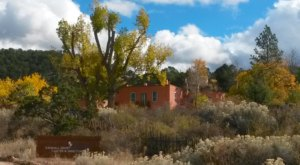 Plan Your Visit To This Amazing Bird Sanctuary In New Mexico As Soon As You Can