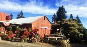 This Charming Oregon Family Farm is Perfect For Your Next Outing