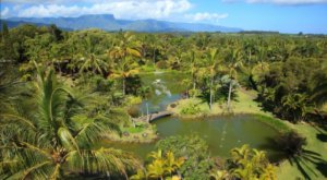 The Unique Botanical Garden In Hawaii With Its Very Own Lagoon