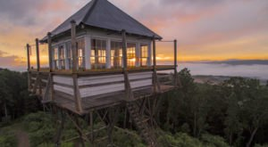 Sleep Up In The Stars At This West Virginia State Park Fire Tower