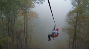 There's A Zip Line Hike In This Arkansas Forest And It's The Ultimate Adventure