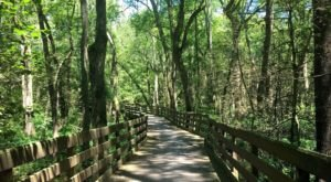 The Beautiful Lake Trail In Delaware Is The Perfect Destination For A Hot Summer Day