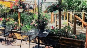 Dine In A Magical Outdoor Garden At This One Restaurant In Rhode Island