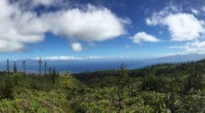 Head To The Highest Point Of Lanai On This Epic Trail Unlike Any Other