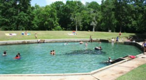Most People Don't Know These Two Spring Fed Swimming Holes In Alabama Even Exist