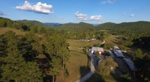 Camp On This North Carolina Working Cattle Ranch For A Family Trip To Remember
