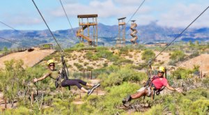 The Safari Adventure Course That Will Make You Forget You're In Arizona