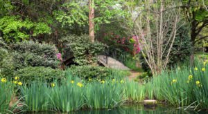 This Beautiful 7-Acre Botanical Garden In Mississippi Is A Sight To Be Seen