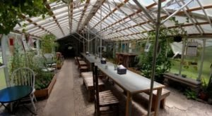 This Greenhouse Restaurant In Mississippi Is The Most Enchanting Place To Eat